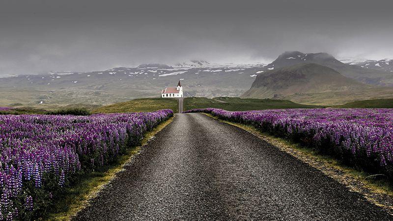 11 Kesalahan Turis Saat Liburan di Islandia (Part 2)