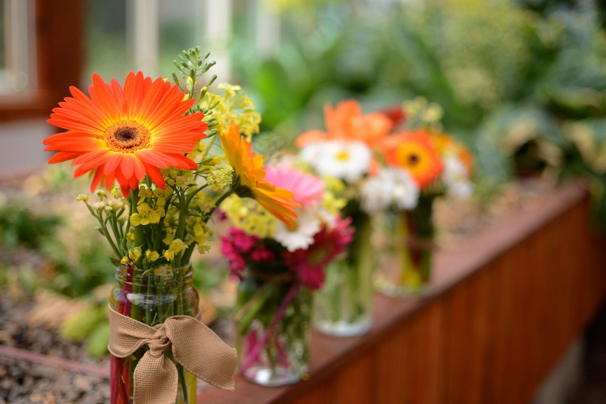 Flower Power: Indah, Menenangkan!