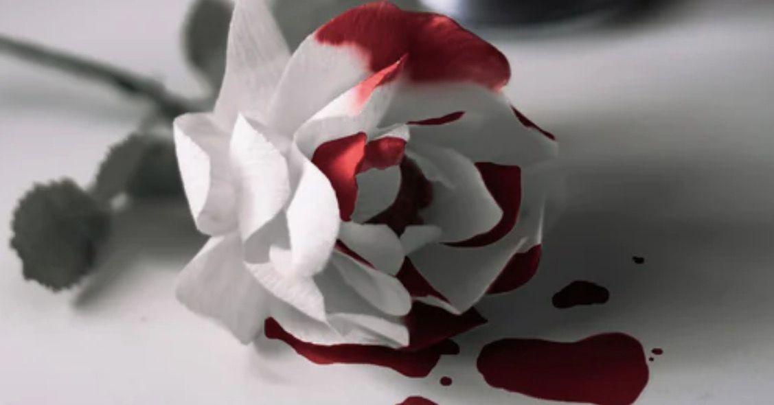 Kandungan darah menstruasi