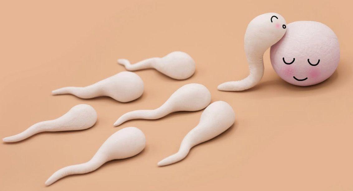 Keunikan Sperma